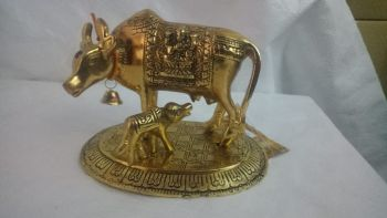 Cow Calf Krishan Gold Meduim